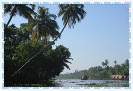 Kumarkom Backwaters
